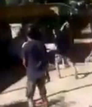 La gente destrozó el lugar (Captura de video).