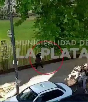 Cámaras de seguridad la captaron en La Plata (Captura de video).