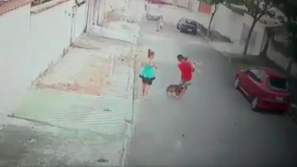 Un joven salvó a un nene de ser atacado por un pitbull (captura video).